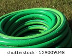 Garden Hose Bundle On The Mown...