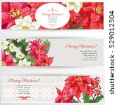 set of three horizontal banners.... | Shutterstock .eps vector #529012504