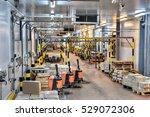 saint petersburg  russia  ... | Shutterstock . vector #529072306