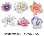 set with flowers. rose. pansies.... | Shutterstock . vector #529072723