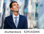 successful manager in a... | Shutterstock . vector #529142044