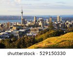 auckland view from mt eden | Shutterstock . vector #529150330