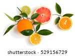 Top View Of Branch Of Citrus...