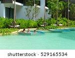pattaya  thailand   april 20 ... | Shutterstock . vector #529165534