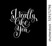 i really like you. love letter  ... | Shutterstock . vector #529171798