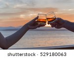 toasting the good life | Shutterstock . vector #529180063
