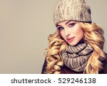 trendy warm winter   beautiful  ... | Shutterstock . vector #529246138
