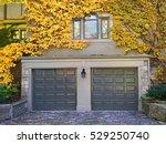 garage doors with vines and... | Shutterstock . vector #529250740