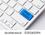 business concept  family... | Shutterstock . vector #529260394