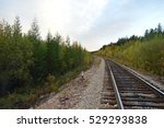 railway in the forest | Shutterstock . vector #529293838