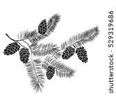 hand drawn pine tree branch... | Shutterstock .eps vector #529319686