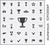 award icons universal set for...   Shutterstock . vector #529330069