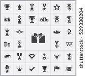 award icons universal set for... | Shutterstock . vector #529330204
