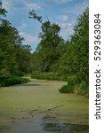 river water marsh. | Shutterstock . vector #529363084