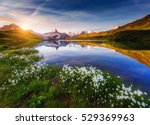 great view of mt. schreckhorn... | Shutterstock . vector #529369963