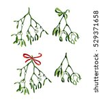 watercolor christmas branch of... | Shutterstock . vector #529371658