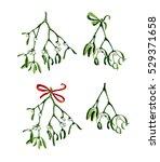 watercolor christmas branch of... | Shutterstock . vector #529371658