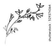 isolated flower decoration... | Shutterstock .eps vector #529374364