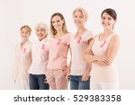 women wearing pink color ... | Shutterstock . vector #529383358