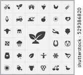 plant icon. agriculture  farm...   Shutterstock . vector #529386820