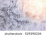 winter bright background. the... | Shutterstock . vector #529390234