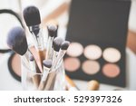 professional makeup brushes and ... | Shutterstock . vector #529397326