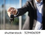 male adult businessman in a... | Shutterstock . vector #529406509