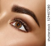 beauty brunette woman eye with... | Shutterstock . vector #529407280