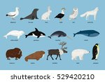 collection of arctic animals | Shutterstock .eps vector #529420210