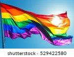 Rainbow Flag Consists Of Six...