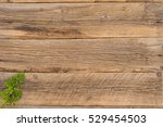 sprig of parsley on an old... | Shutterstock . vector #529454503