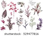 big set watercolor elements  ... | Shutterstock . vector #529477816