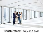 businessmen and businesswomen... | Shutterstock . vector #529515460