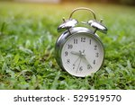 Alarm Clock On A Grass.alarm...
