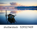perfectly specular reflection... | Shutterstock . vector #529527409