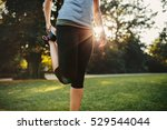 cropped shot of fitness woman... | Shutterstock . vector #529544044