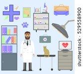 veterinarian with cat. | Shutterstock .eps vector #529558900