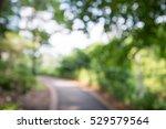 abstract blur city park bokeh... | Shutterstock . vector #529579564