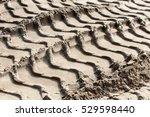 Texture  Background. Footprint...