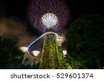 singapore  november 7  night... | Shutterstock . vector #529601374