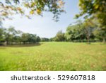 abstract blur city park bokeh... | Shutterstock . vector #529607818