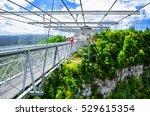 sochi  russia   august 15  2016 ... | Shutterstock . vector #529615354