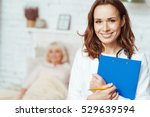 professional doctor holding... | Shutterstock . vector #529639594