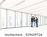 full length of business people... | Shutterstock . vector #529639726