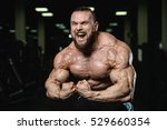 brutal strong athletic men... | Shutterstock . vector #529660354