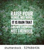 inspirational motivating quote... | Shutterstock . vector #529686436