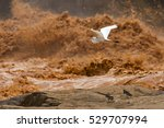 doce river  river of mud in ... | Shutterstock . vector #529707994