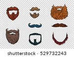 Stylish Beard And Moustache Se...
