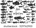 fish brush ink hand drawing... | Shutterstock .eps vector #529762903