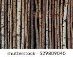 Fence Of Wood With Bark Like A...